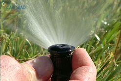 How to Save Water in Your Yard - free water audit