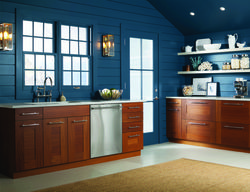 GE Appliances and Amazon Dash