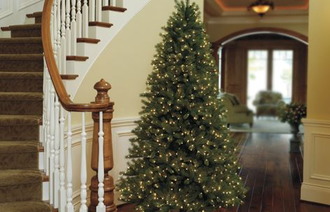Just Cut® family of pre-lit Christmas trees