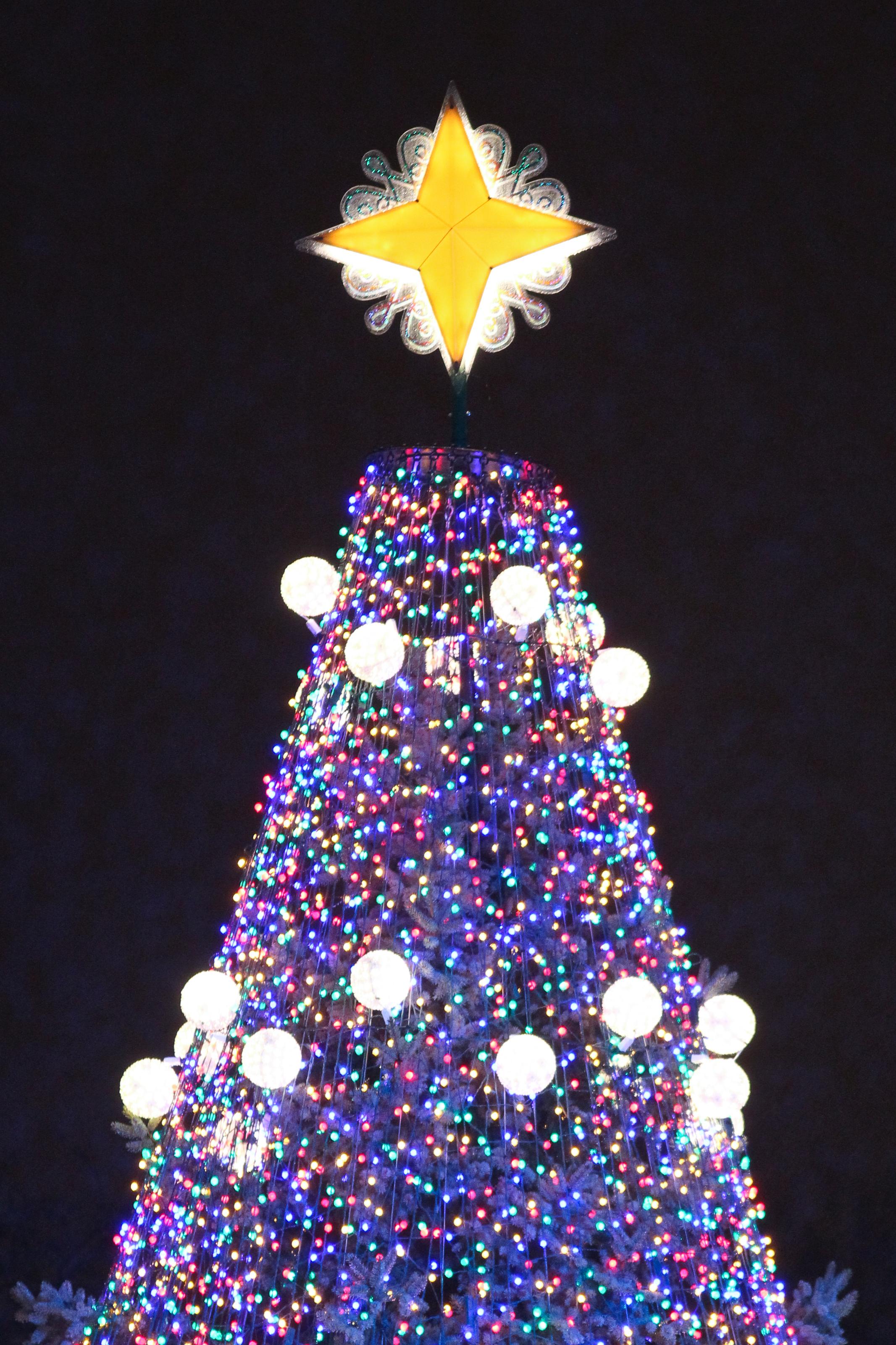 National Christmas Tree & GE Lighting Illuminates the National Christmas Tree | GE Lighting ... azcodes.com