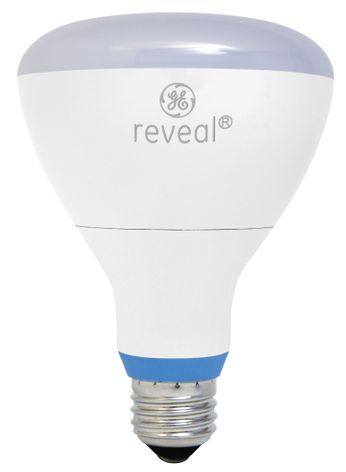 Ge reveal led lighting provides energy efficiency and for Energy efficient brands