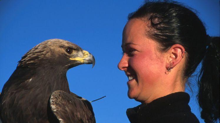 SCE's Avian Protection Program