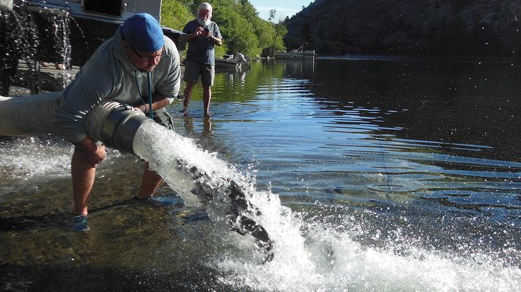 SCE Trout Stocking a Boon to Drought-Impacted Eastern Sierra Businesses