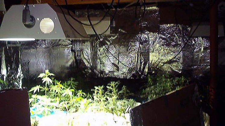 Grow Houses Can Be Electrical Fire Hazards