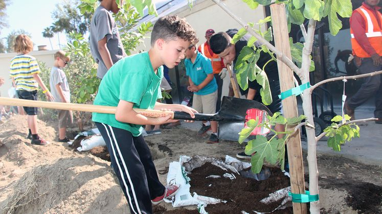 Children Celebrate Arbor Day by Planting Trees
