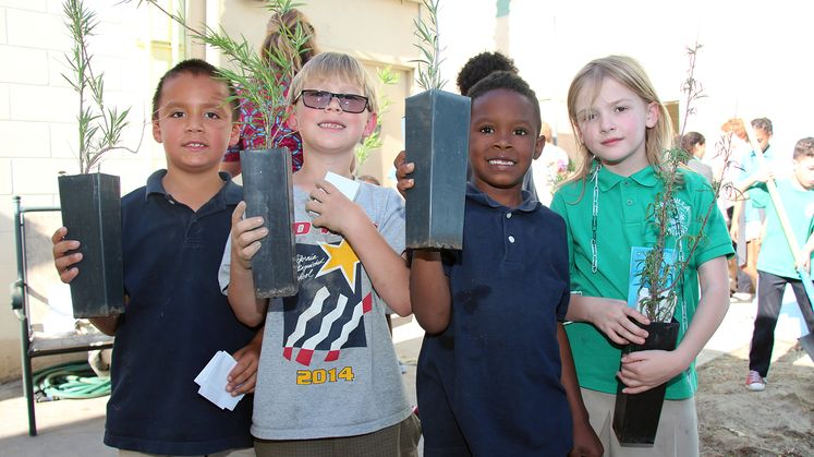 Palm Springs Tree Donations - Arbor Day