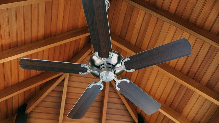 Earth Day - energy efficiency