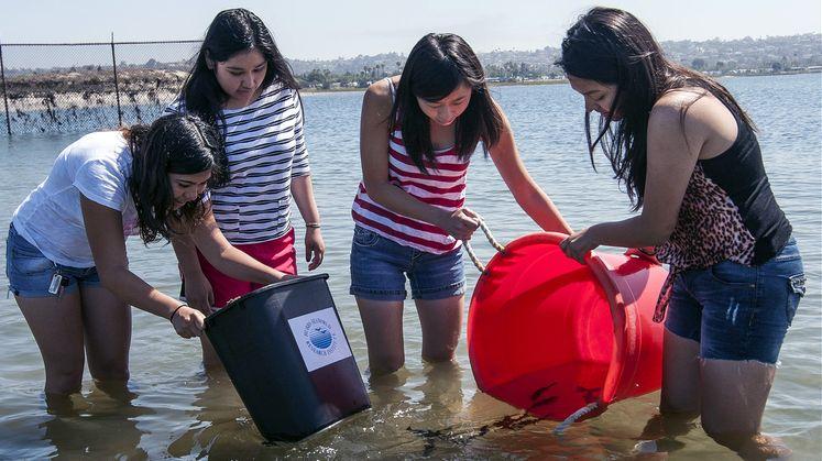 Students Raise, Release Sea Bass in Innovative STEM Program