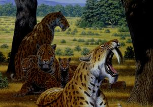 sabertooth cats artwork