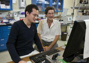 Giovanni Zocchi and graduate student Hao Qu
