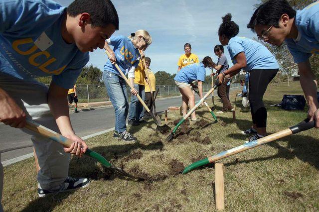 Volunteers at VA
