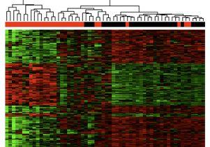Gene Expression Chart