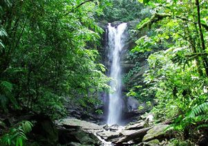 Petite Marianne River waterfall in northern Trinidad