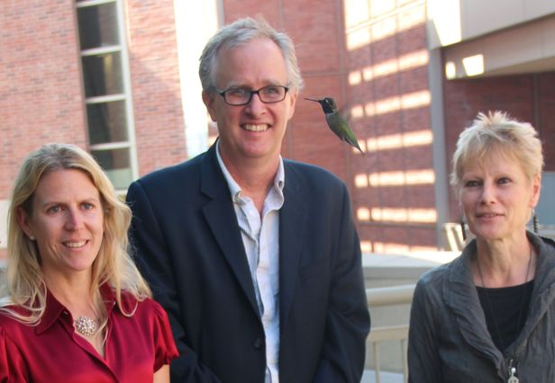Three profs and a hummingbird
