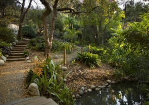 UCLA's Mildred E. Mathias Botanical Garden