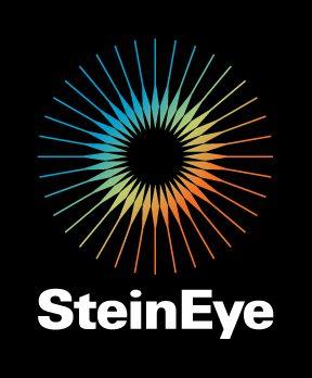 Stein Eye logo