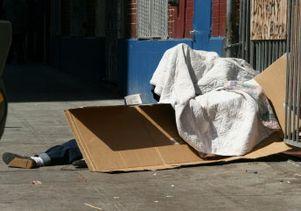cardboard-box-shelter
