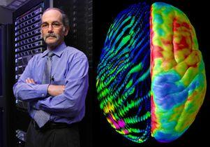 toga brain-scan