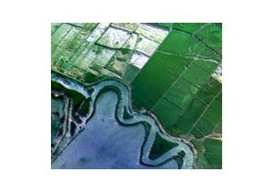 Delta farmland thumbnail