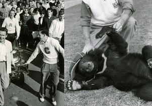UCLA Victory Bell and bear cub
