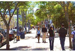 Walking Westwood