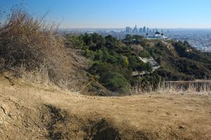 Griffith Park drought