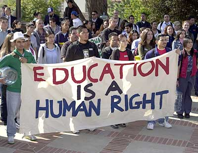 illegal immigration human rights violations essay Essay on illegal immigration--with a free essay review - free essay reviews essayjudge illegal immigrants are criminals and should not have rights of any.