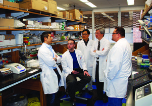 UCLA School of Dentistry researchers
