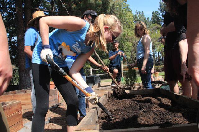 UCLA urban ag class at Sunset Canyon garden