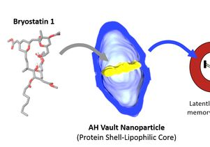 Bryostatin 1 vault delivery