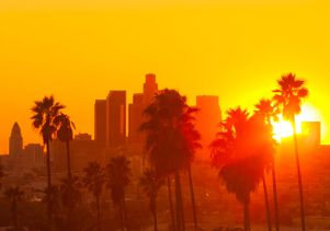 Los Angeles in the sun
