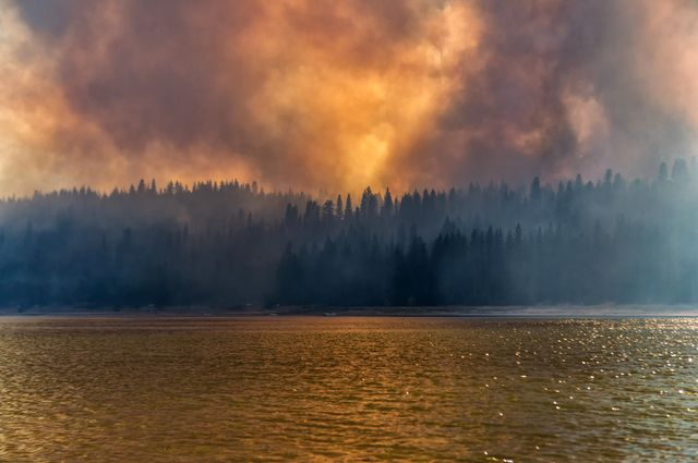 Wildfire at Bass Lake