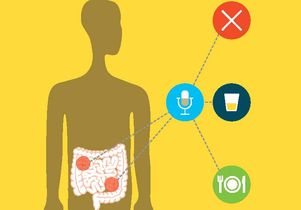 Device that senses and record the vibrations of the digestive tract