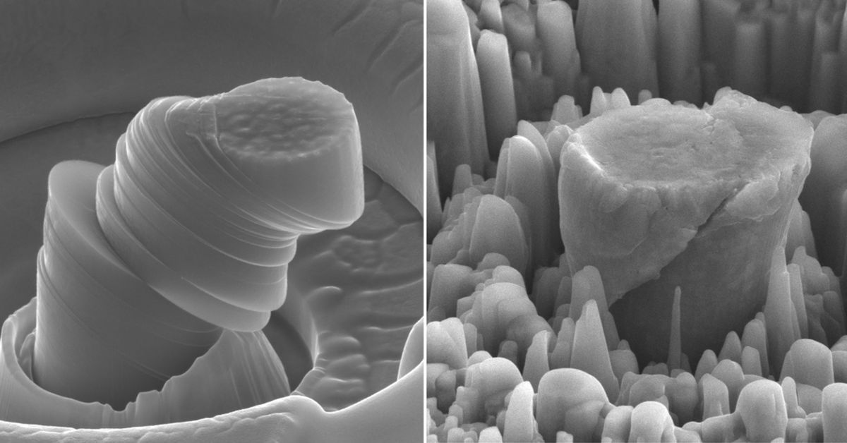 At left, a deformed sample of pure metal; at right, the strong new metal made of magnesium with silicon carbide nanoparticles. Each central micropillar is about 4 micrometers across.