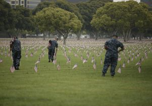 UCLA community gathers flags after Memorial Day