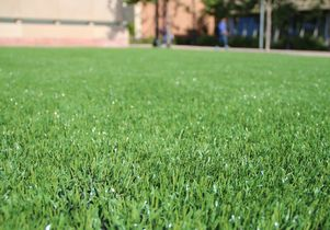 Close-up of the artificial turf on the IM Field.