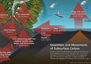 Major fluxes of carbon