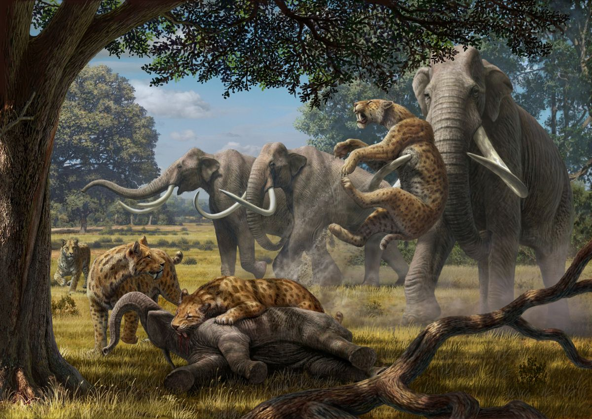 the extinction of pleistocene mammals As the ice melted at the end of the pleistocene epoch about 12,000 years ago, large mammals (greater than 10 kilograms) such as the woolly mammoth, the giant sloth.