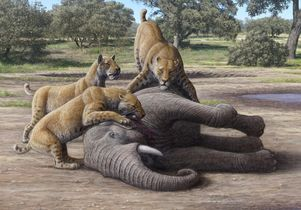 Attack in the Pleistocene