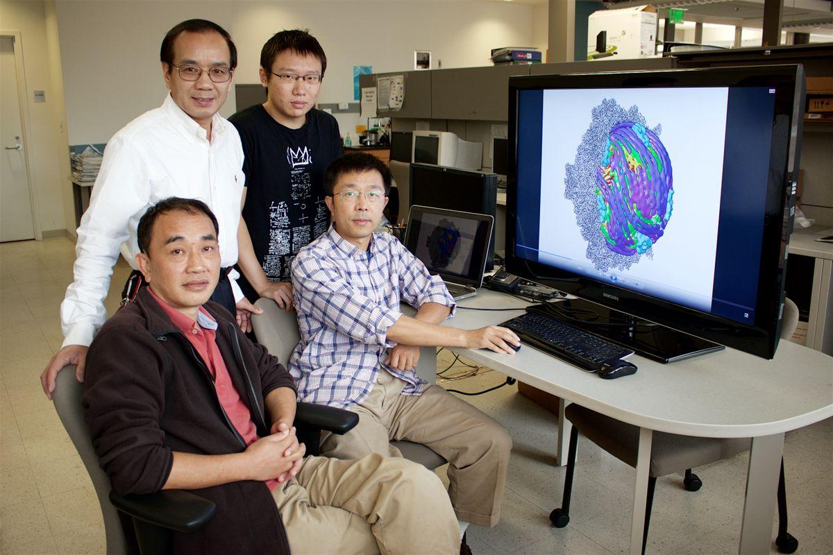 Zhou cryoEM team