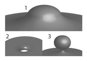 Cell membrane PNAS paper