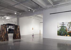 MFA gallery