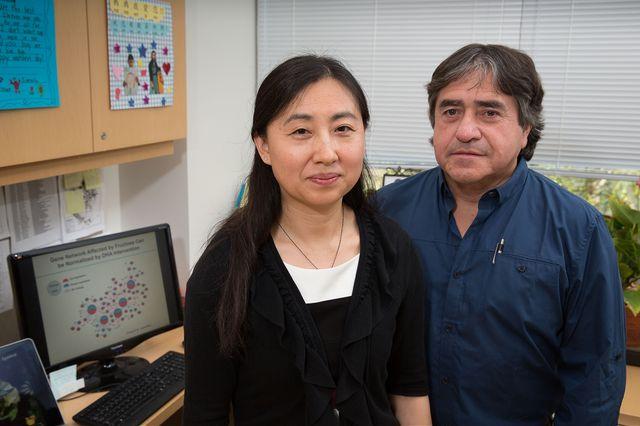 Xia Yang and Fernando Gomez-Pinilla