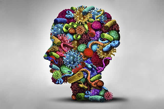Microbes and the brain