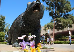 Flowers at Bruin