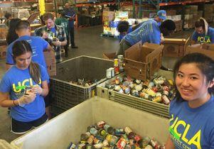 Volunteer Day 2016 food bank