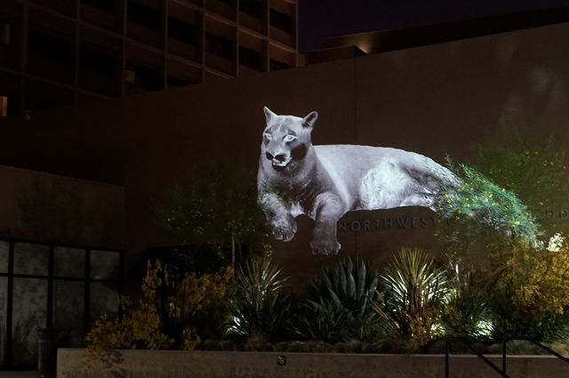 Mountain Lion projection