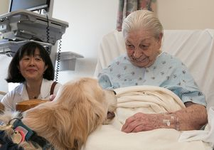Patient meets Ella, volunteer dog