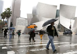 Disney Hall in Los Angeles on a rainy day