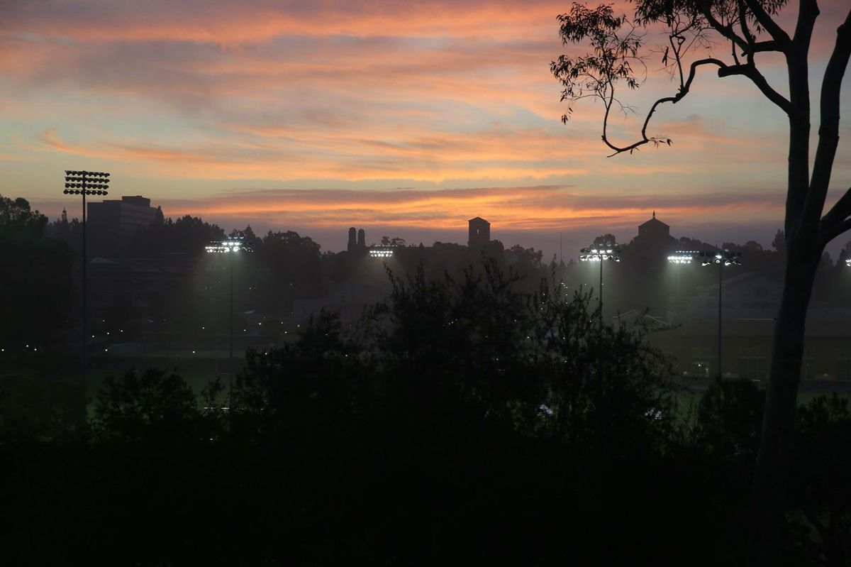 Sunrise over UCLA